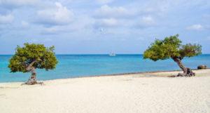 playa aruba palm beach